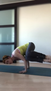 yoga 050